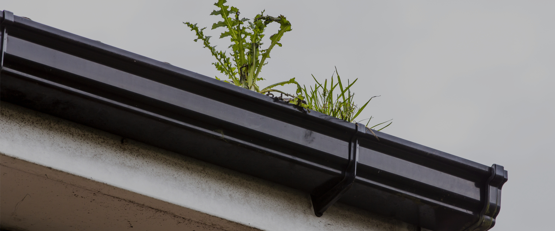 Professional, Effective Gutter Cleaning